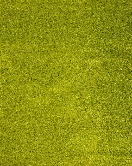 Alfombra Shaggy de pelo largo en color liso Catay 8507 Verde