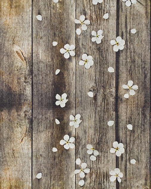 Alfombra con motivos Florales Sprinty SPRING